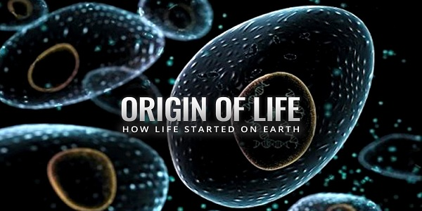 The Origin Of Life: An Islamic Perspective